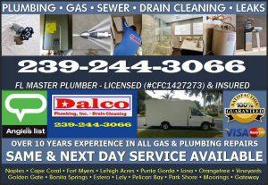 dalco plumbing naples fl 070918